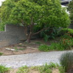 FB-Ryger-GB-001-150x150 Landscaping: Ryger Gordon's Bay