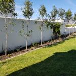 FB001-150x150 Landscaping: Winston's Garden